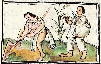 Aztec Farmers