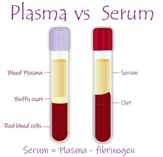 Serum VS Plasma